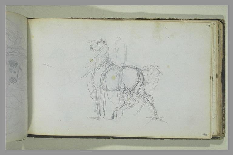Un cheval, tourné vers la gauche