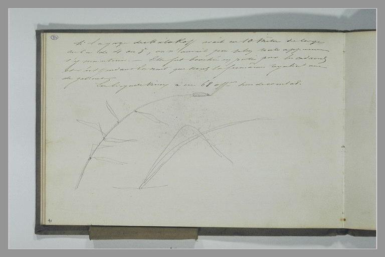 YVON Adolphe : Note manuscrite, roseaux