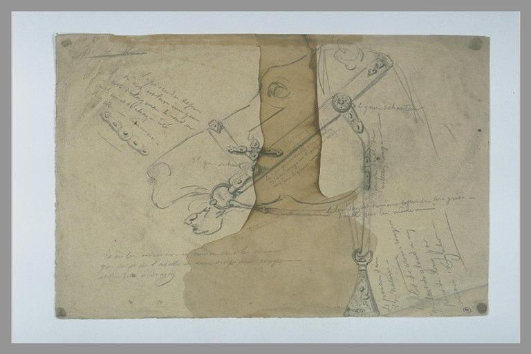 Tête de cheval harnachée et annotations manuscrites