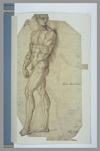 Homme nu debout, marchant vers la gauche, le bras gauche coupé