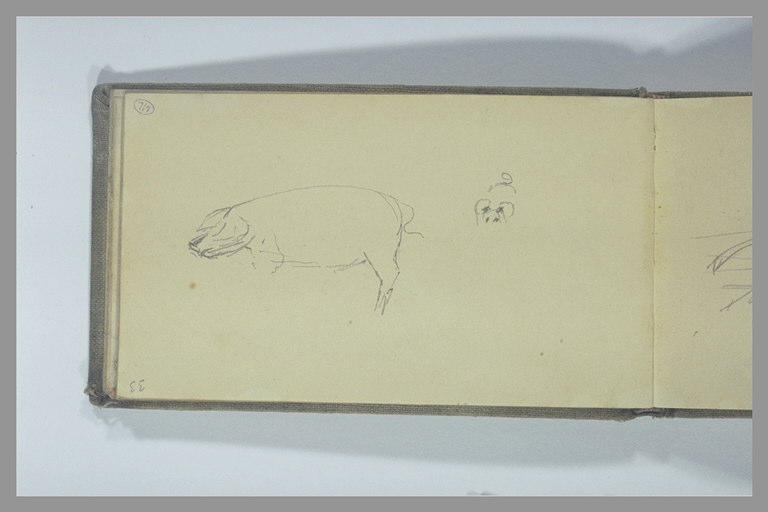 POMPON François : Porc vu de profil, oreilles, yeux et queue d'un porc