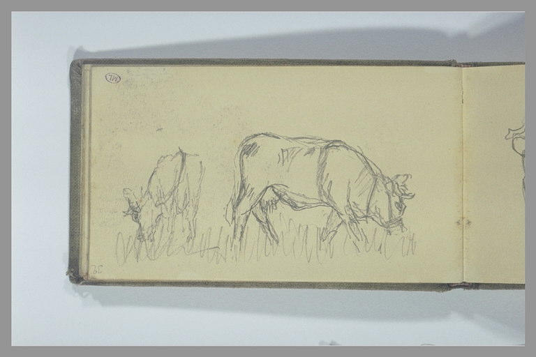 POMPON François : Deux vaches paissant