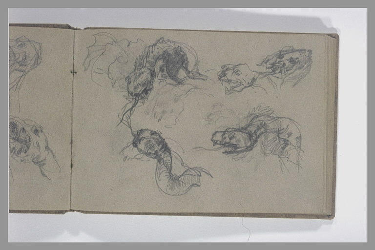 ISABEY Eugène : Cinq études de la tête d'un serpent ou d'un dragon