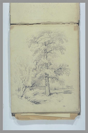 Paysage avec étude d'arbres et barrière