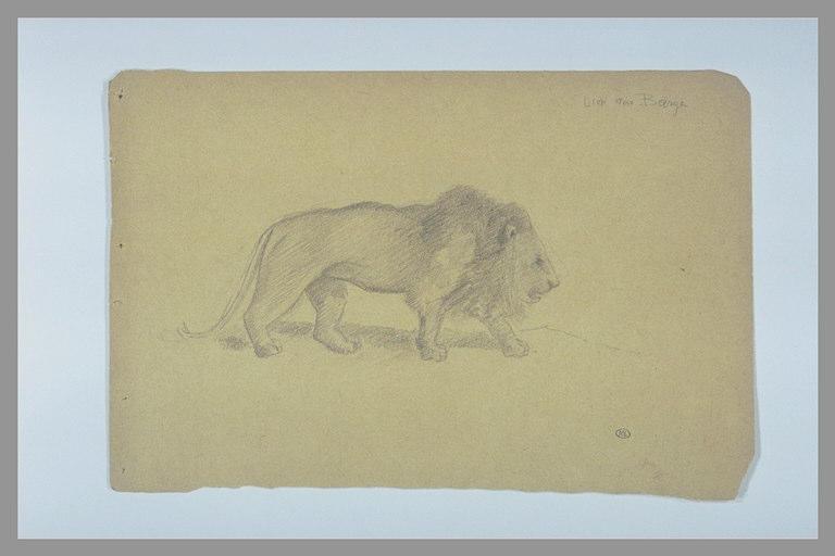 DEGAS Edgar, BARYE Antoine Louis (inspiré par) : Lion marchant vers la droite