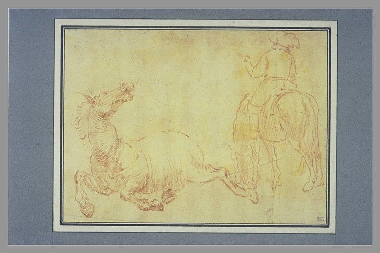 anonyme : Cheval hénissant, cavalier, vu de dos