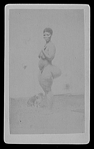 Femme hottentot de profil (Coranna)