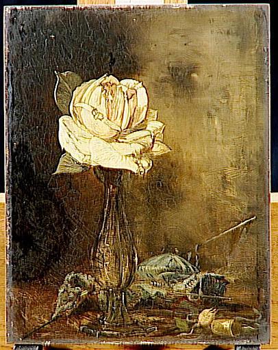 Rose thé_0
