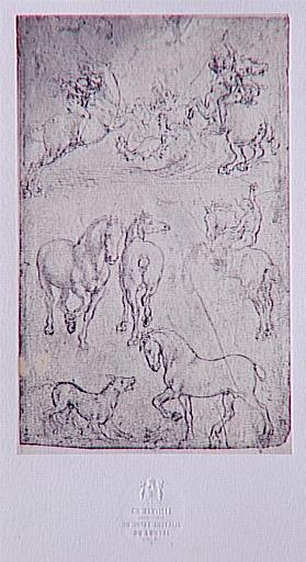 Chevaux d'après Léonard de Vinci_0