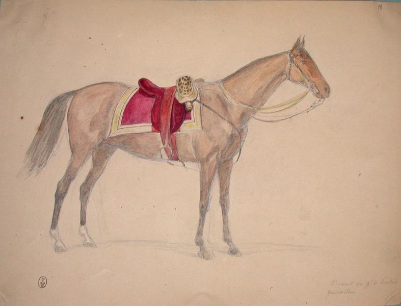 Cheval du général de division Gueswiller ; Siège de Rome de 1849 (en 3 tomes)