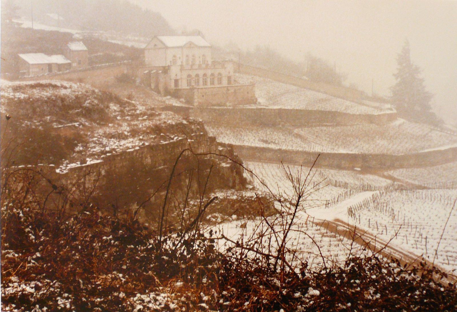 Le Château gris sous la neige_0