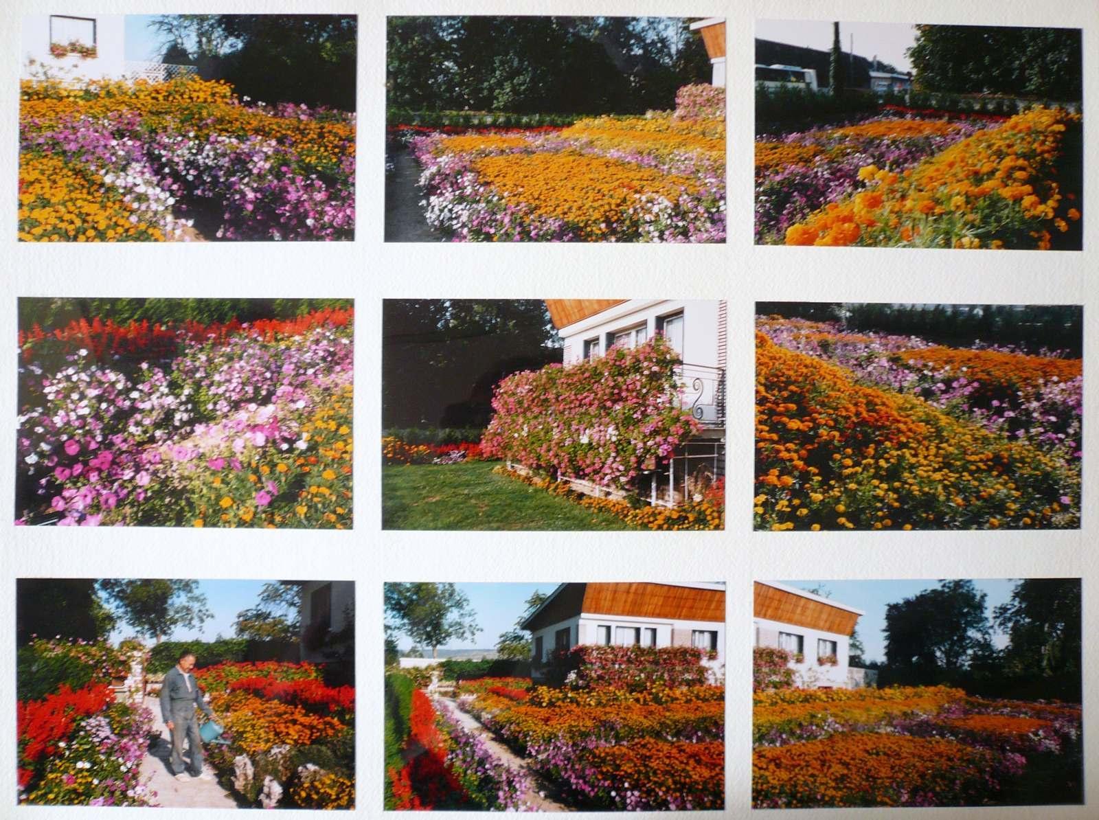 Le jardin de Monsieur Vincent_0