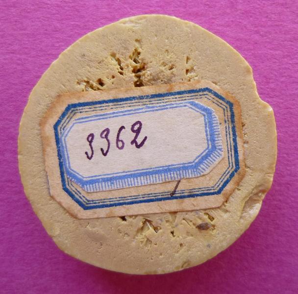 Moulage d'un contre-sceau armorié d'un comte de Vendôme (titre d'usage)
