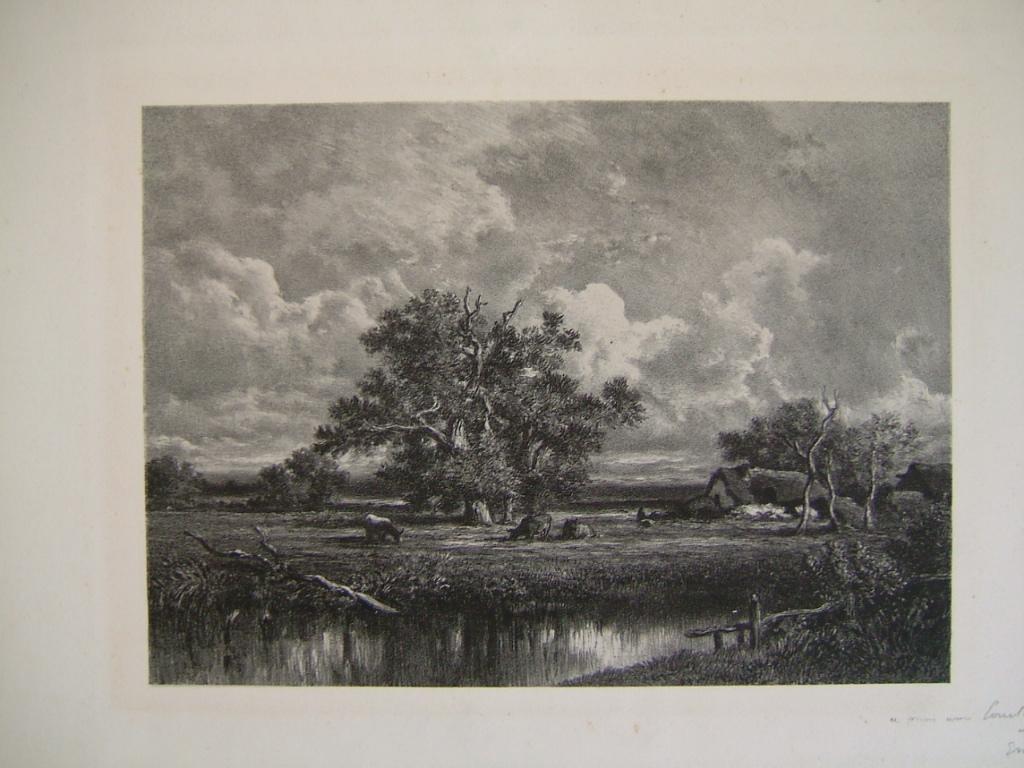 Paysage à l'étang (titre factice)