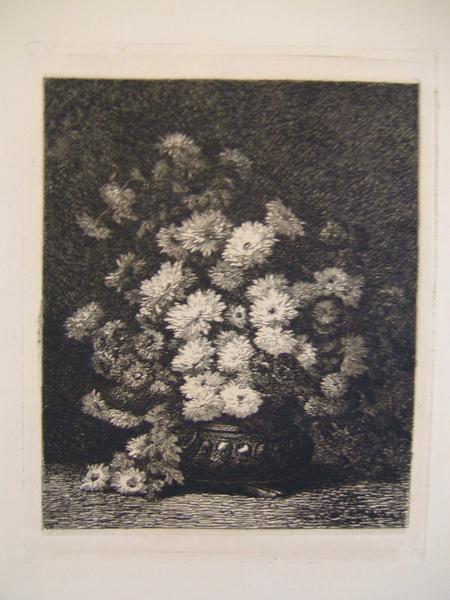 Bouquet de reine marguerites_0