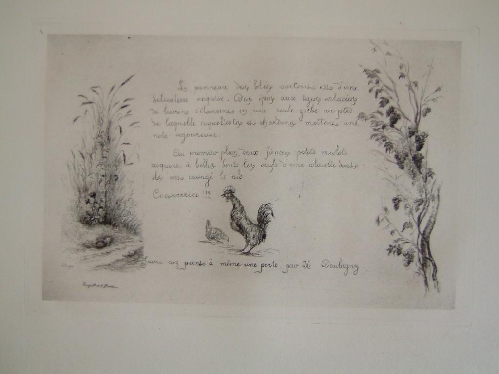 Daubigny, souvenirs et croquis (13) : Jeune coq peint à même une porte par K. Daubigny