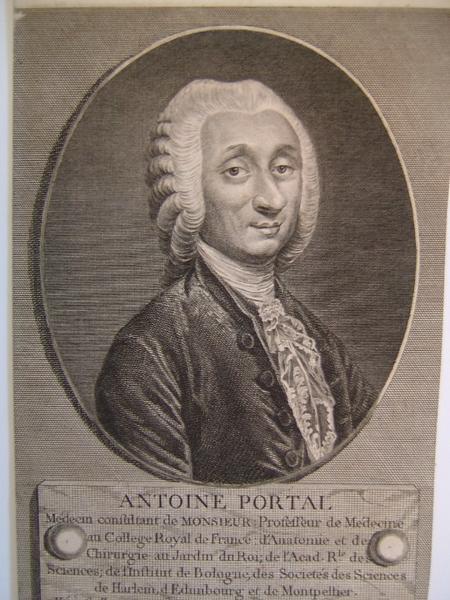Portrait d'Antoine PORTAL_0
