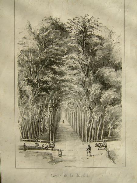 Avenue de la Chapelle (Frouville ?)_0