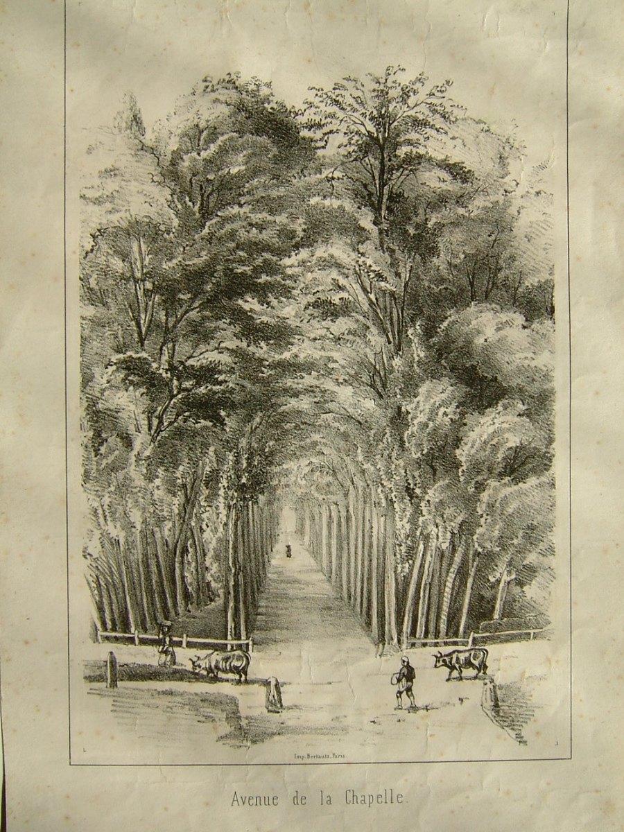 anonyme, BERTAUTS (imprimeur) : Avenue de la Chapelle (Frouville ?)