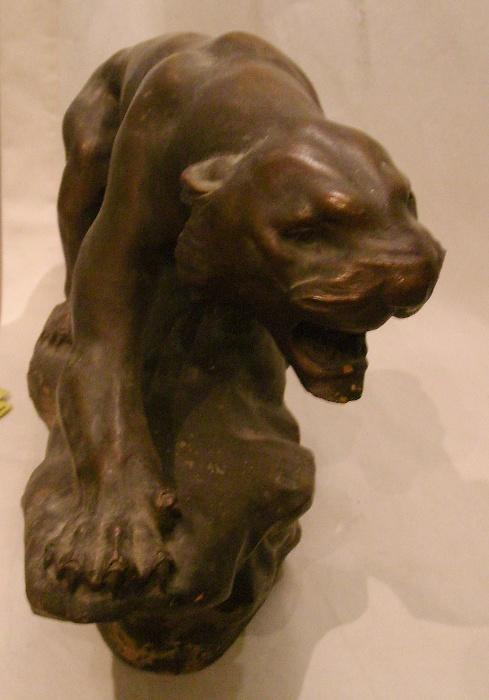Tigre en furie