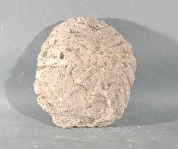 Ex-voto du temple de la forêt d'Halatte, fragment de chevelure_0