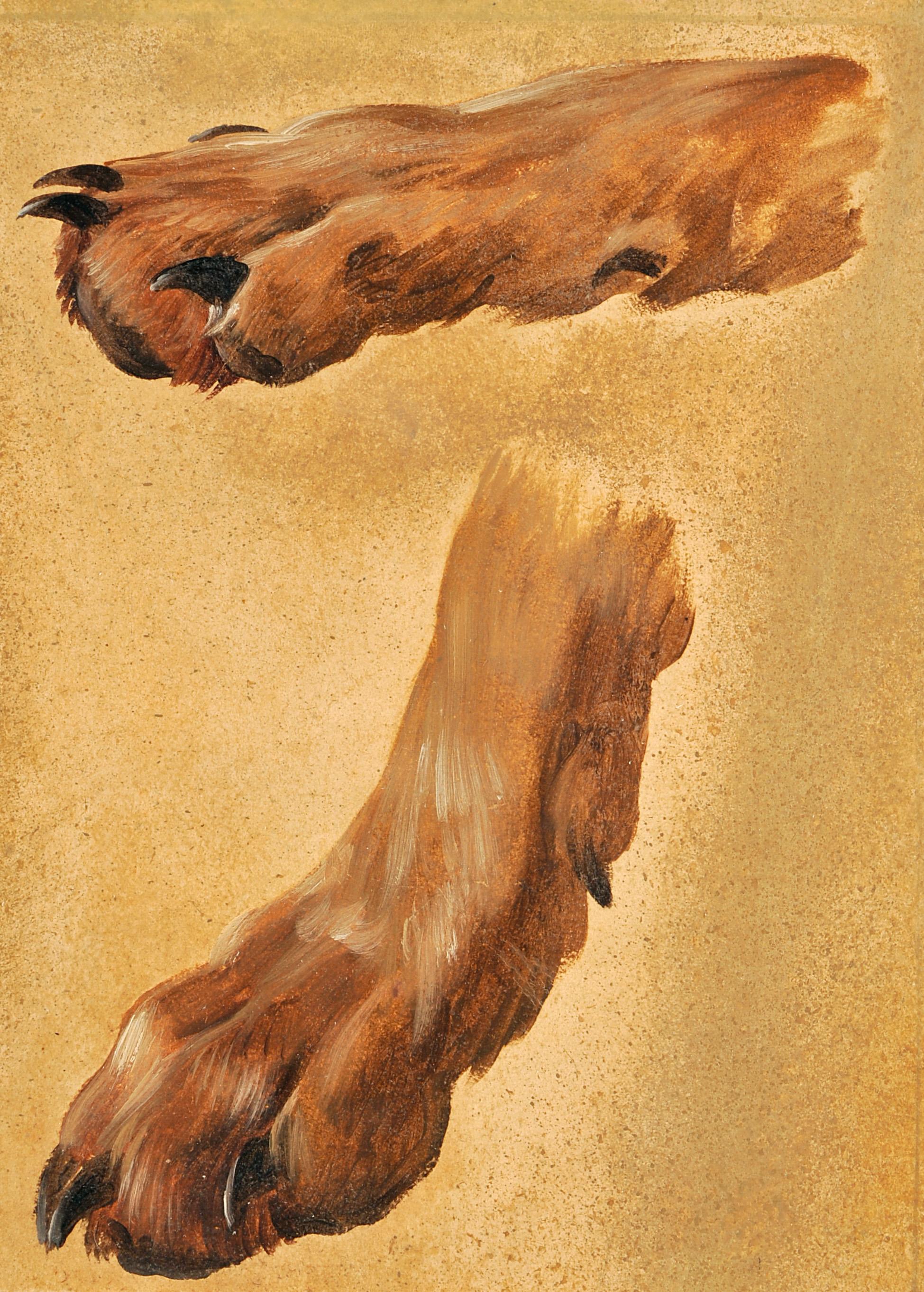 Deux pattes de chiens_0