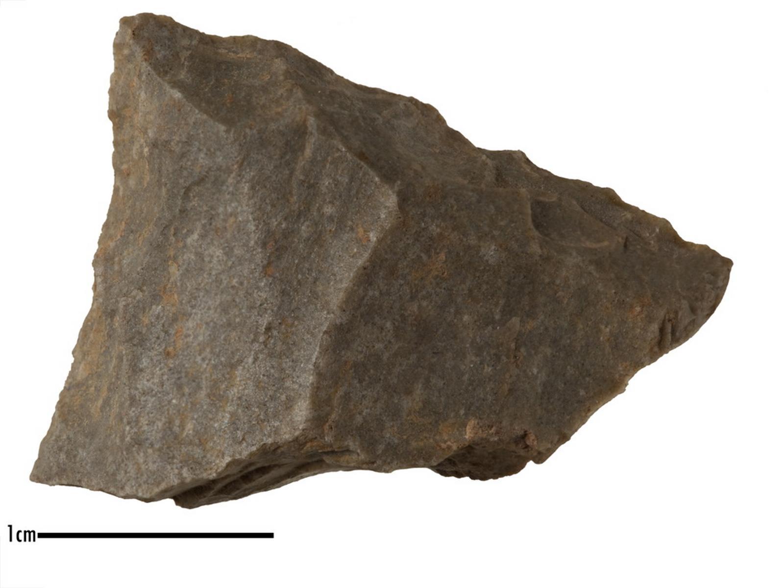 Racloir (déjeté à gauche)_0