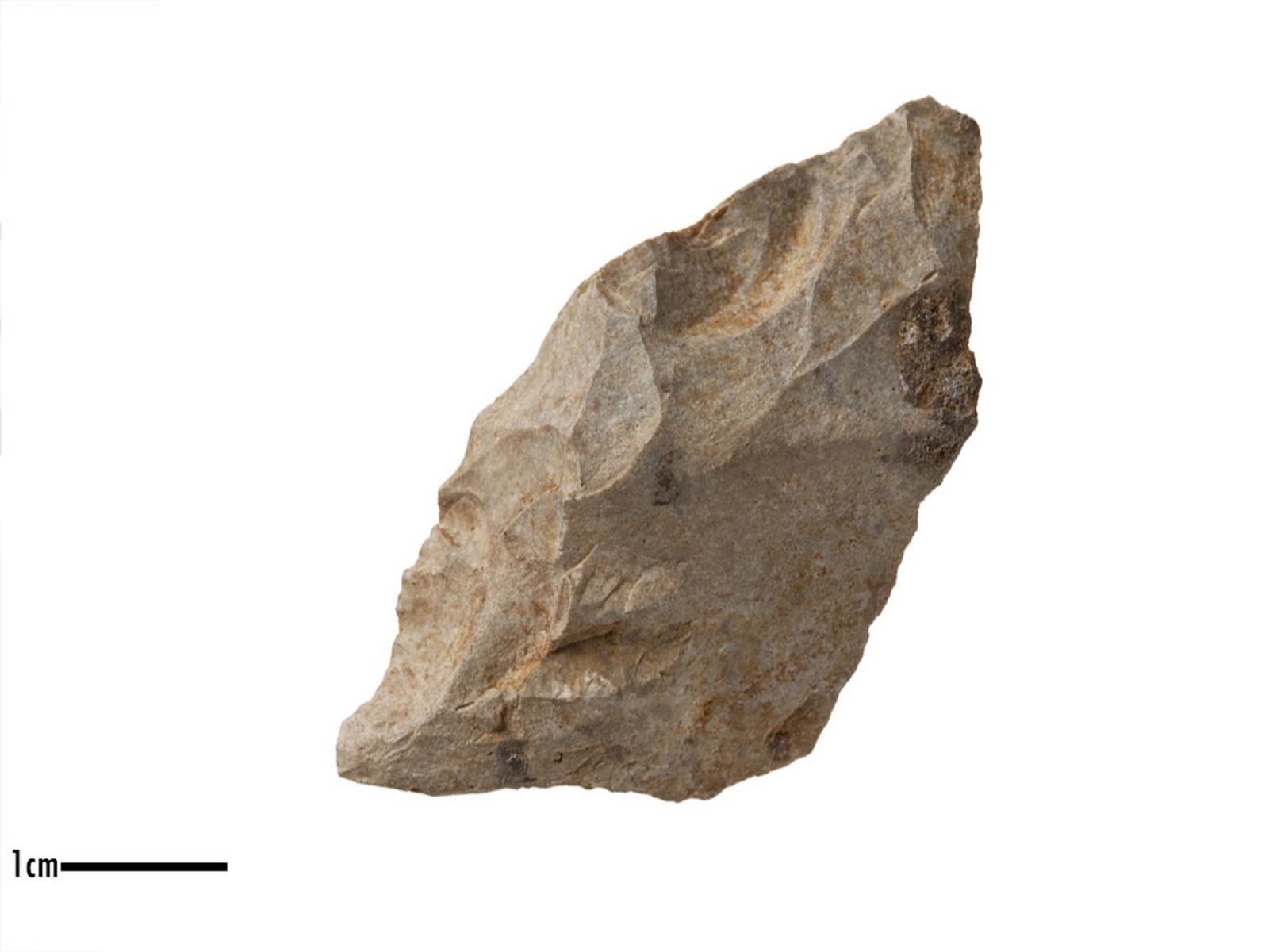 Racloir (transversal)_0