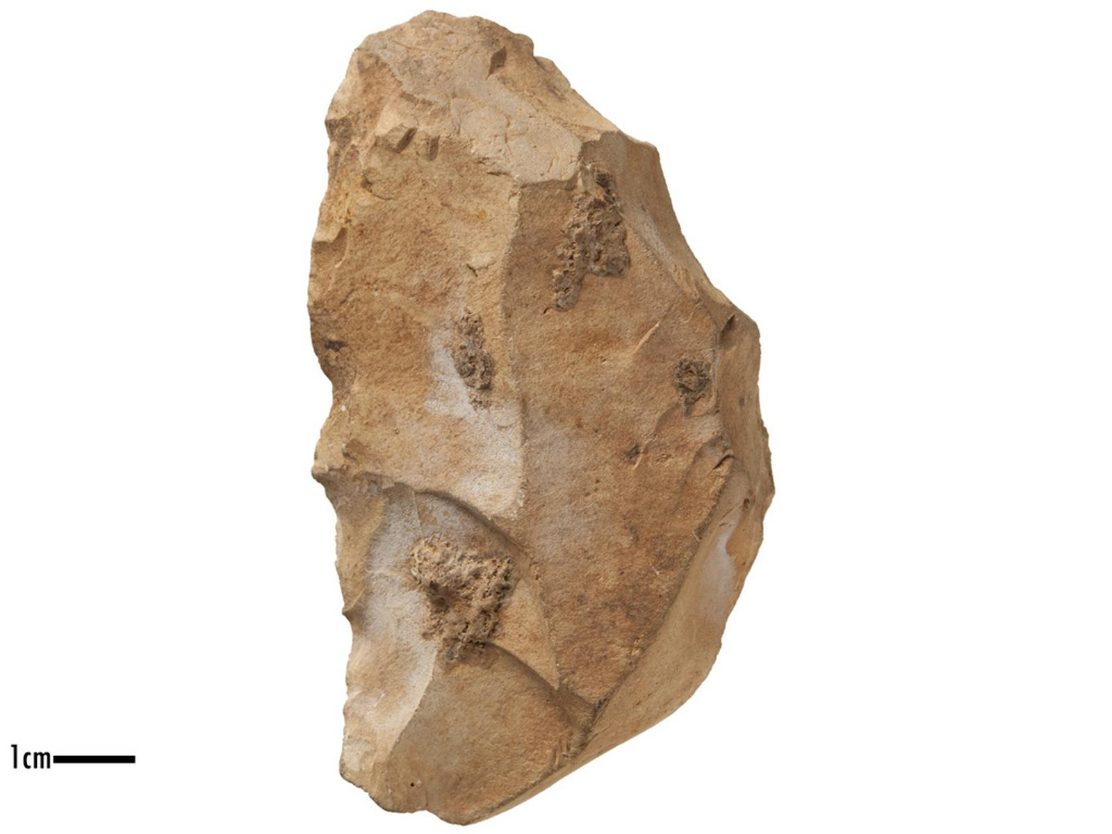 Denticulé (latéral), nucleus (kombewa)_0
