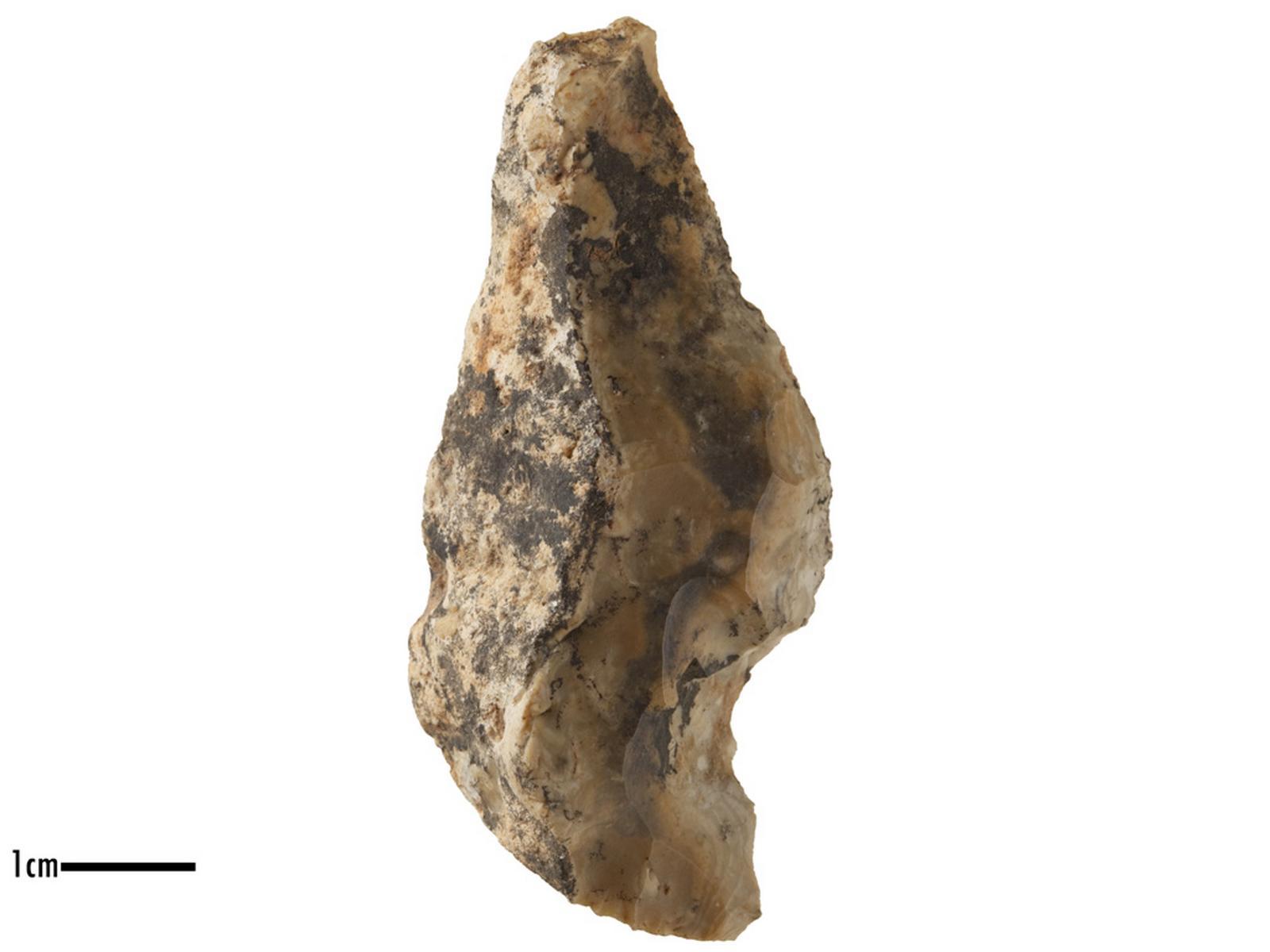 Racloir (latéral), encoche (clactonien)_0