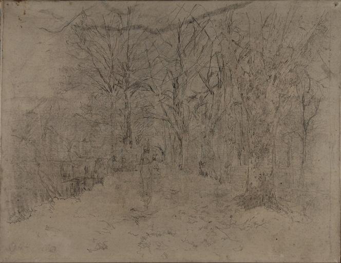Allée dans un bois_0