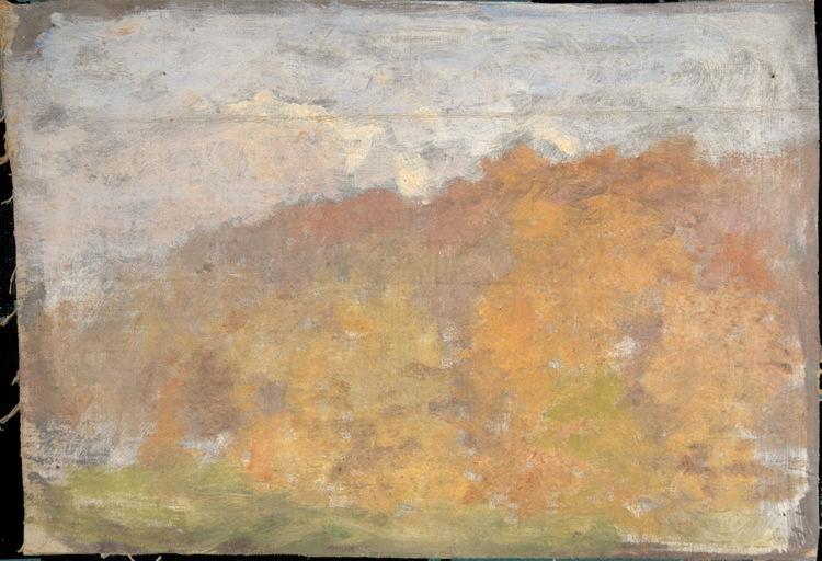 Forêt en automne_0