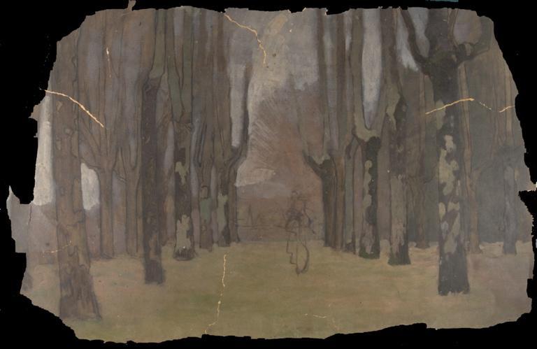 Silhouette de femme dans un parc boisé_0