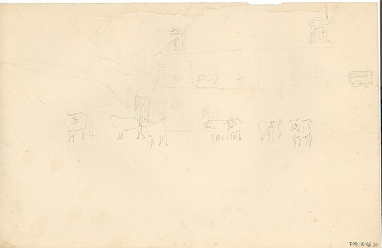 Esquisse de bâtiment (recto). Etude de bovins devant un bâtiment (verso)