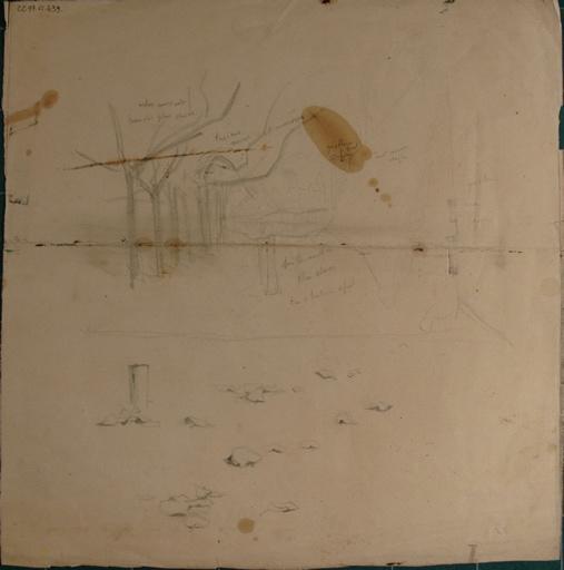 Etudes d'arbres (recto, verso)