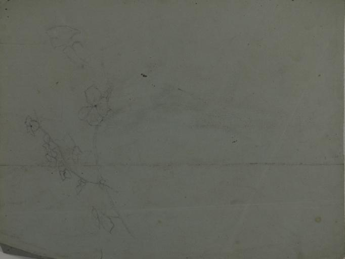 Etudes de chasseurs (recto). Etude de branche fleurie (verso)