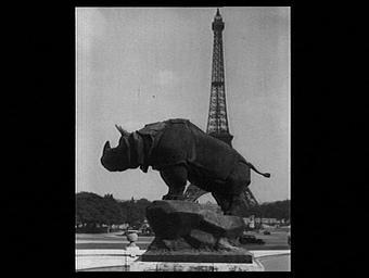 Sculpture : Le Rhinocéros
