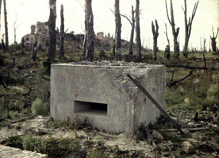 Premières lignes, mars 1917 : blockhaus en ciment armé, arbres morts