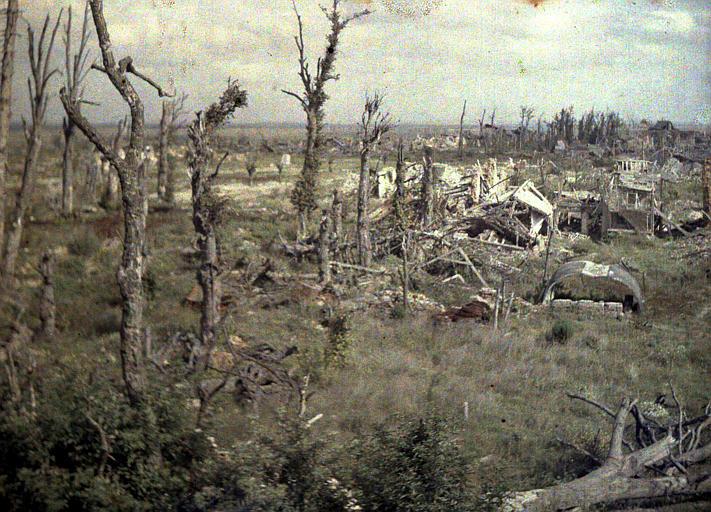 Panorama pris du haut du château (supposé) ;  arbres morts