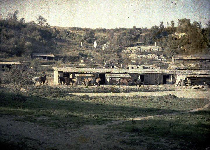 Cantonnement dans les ruines ; chevaux attachés