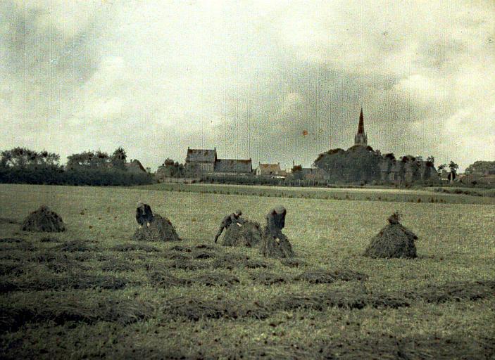 Le trèfle : civils faisant des meules de luzerne. Au fond : clocher et village