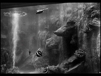 Aquarium du Trocadéro