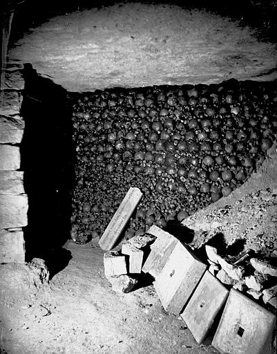 Vue intérieure d'une galerie : cavité remplie d'ossements
