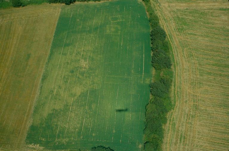Agglomération secondaire gallo-romaine, vue vers le nord de la zone cultuelle et d'habitat.
