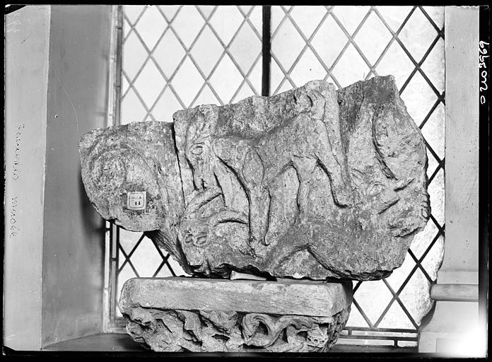 Dépôt lapidaire : pierre sculptée, animaux