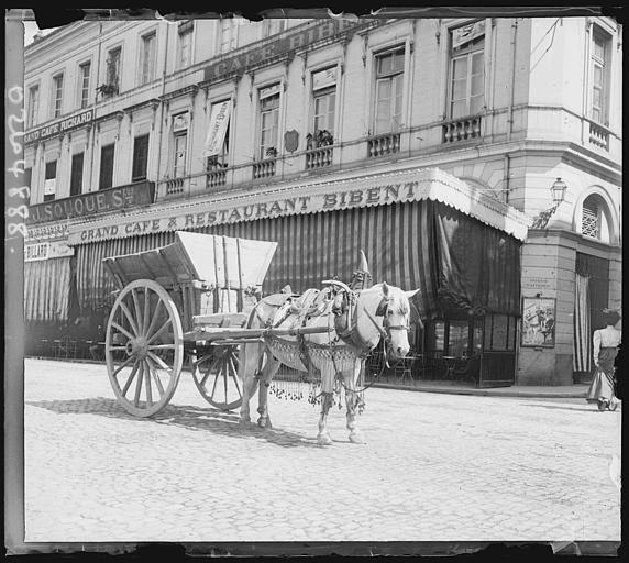 Calèche et cheval devant la terrasse d'un restaurant