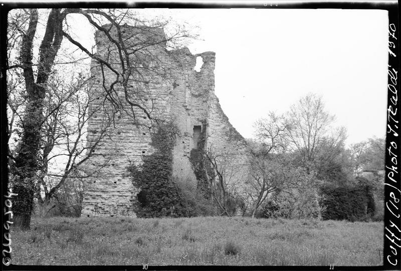 Ruines du donjon