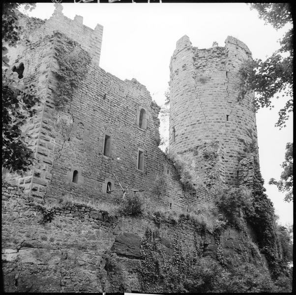 Donjon et corps de logis en ruines