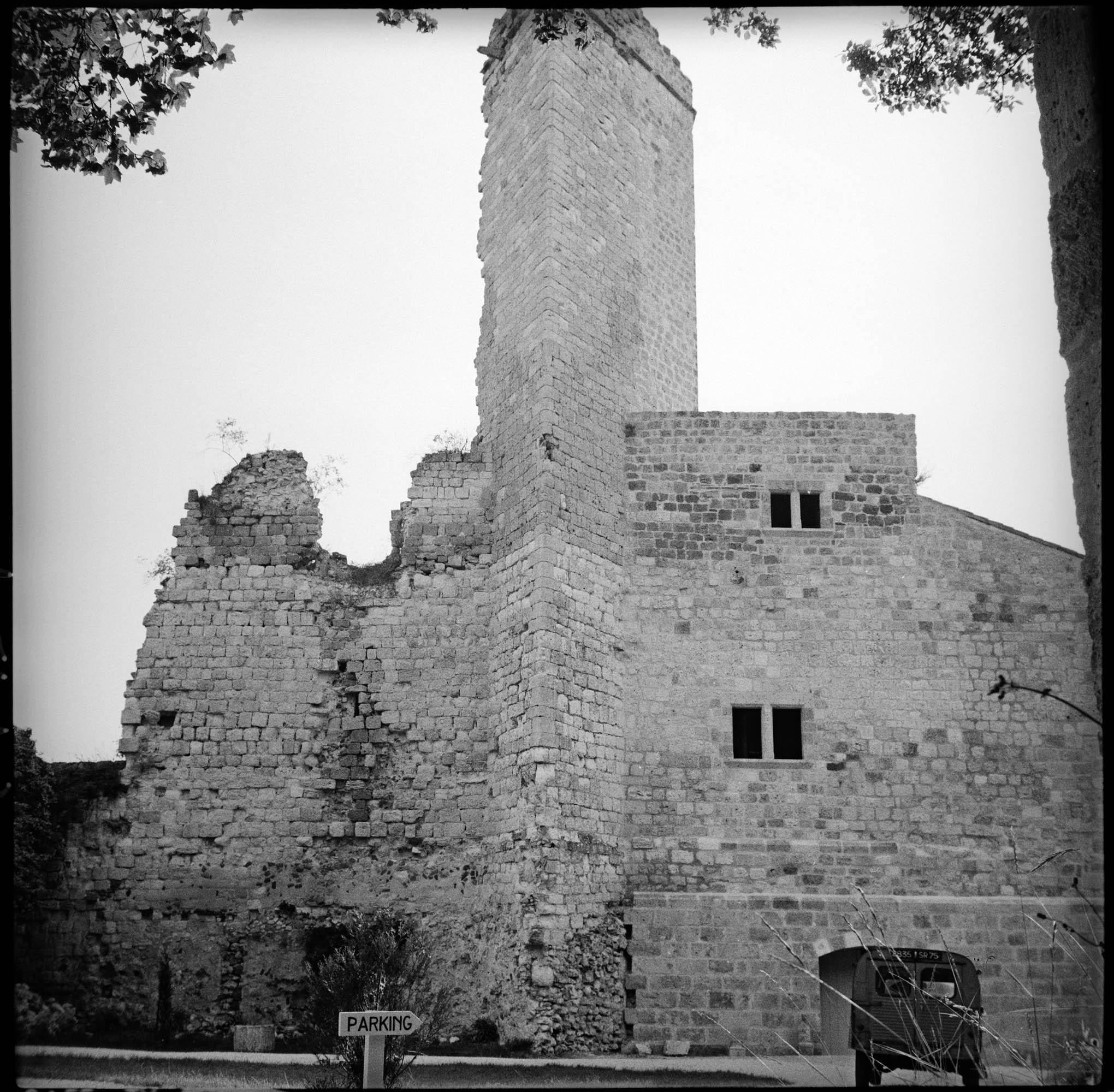 Donjon et logis en ruines