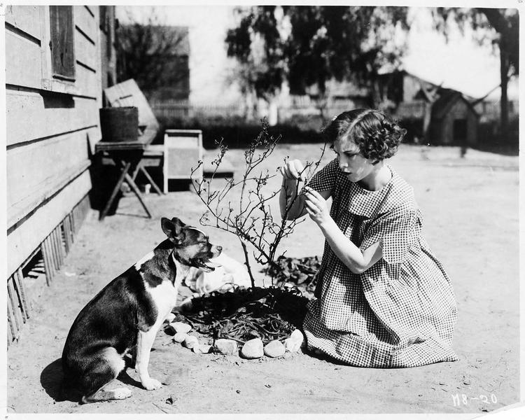 Jane Day (S. Mason) avec son chien